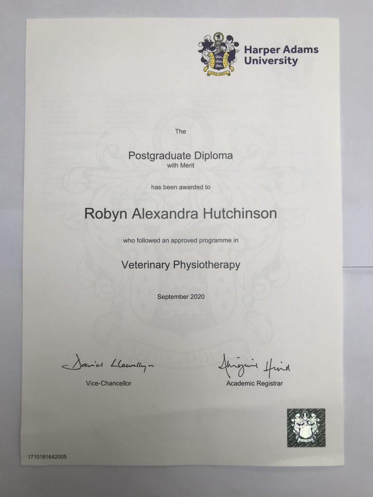 PgD Veterinary Physiotherapy